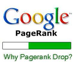 Google Page Rank Drop