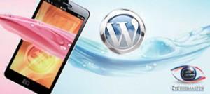 Outsource WordPress Developer Theme Designs