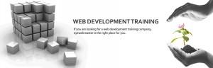 Cebu Web Designs