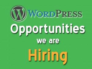 Wordpress Job Hiring